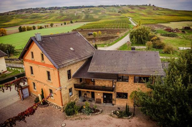 Weingut Gästehaus Gau-Bickelheim