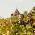 Straußwirtschaft Rheinhessen