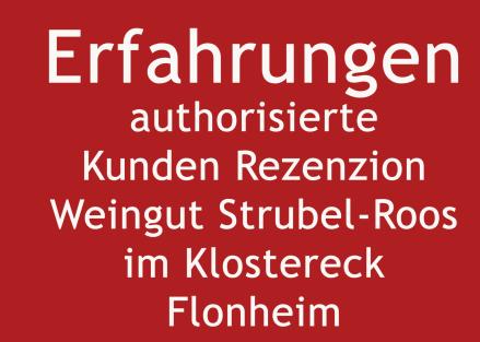 Rezension Rheinhessen Unterkunft Weingut