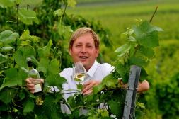 Wein Rheinhessen