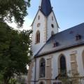 Rheinhessen Empfehlungen